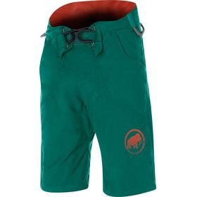 Mammut M's Realization Shorts pine